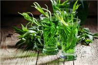 TARRAGON OIL (ESTRAGON OIL)
